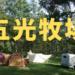 【長野・八ヶ岳エリア】広い!どこに張る?!五光牧場オートキャンプ場